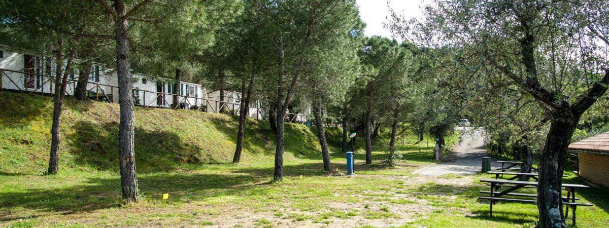 camping lago trasimeno cerquestra lake umbria toscana (14)