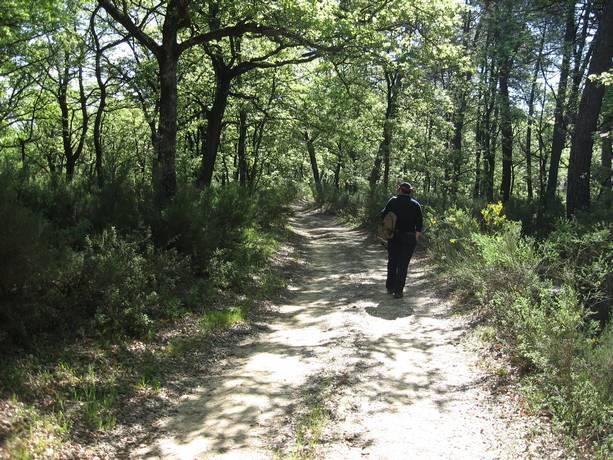 Trekking Ferretto – Petrignano