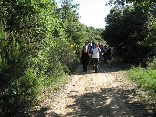 Trekking Paciano – Pausillo