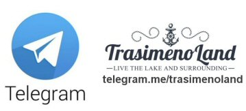 Telegram 359x163