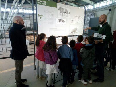 """Pietrafitta – La """"Settimana del pianeta terra"""" riaccende i riflettori sul Museo paleontologico"""