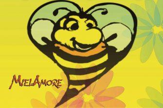 """Nel fine settimana la terza edizione di """"MielAmore"""", l'unico evento dedicato alle api e al loro prezioso dono"""