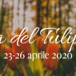 festa del tulipano 2020